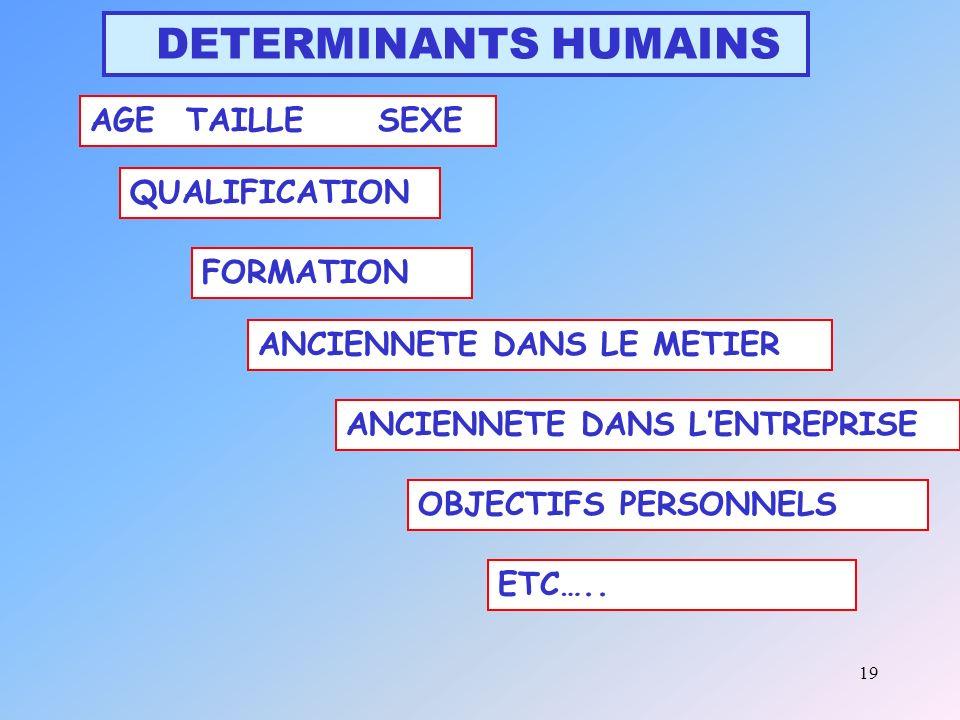 19 DETERMINANTS HUMAINS AGETAILLESEXE QUALIFICATION FORMATION ANCIENNETE DANS LE METIER ANCIENNETE DANS LENTREPRISE OBJECTIFS PERSONNELS ETC…..