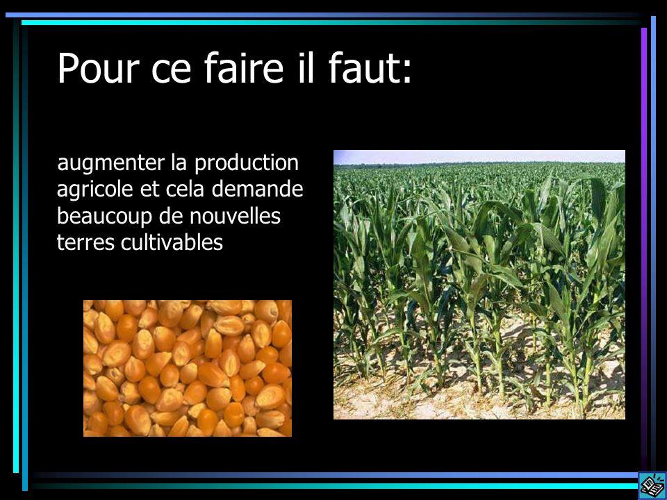 Pour ce faire il faut: augmenter la production agricole et cela demande beaucoup de nouvelles terres cultivables
