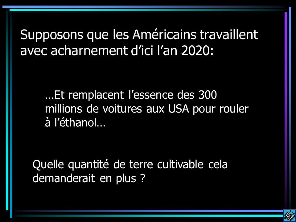 Supposons que les Américains travaillent avec acharnement dici lan 2020: …Et remplacent lessence des 300 millions de voitures aux USA pour rouler à léthanol… Quelle quantité de terre cultivable cela demanderait en plus