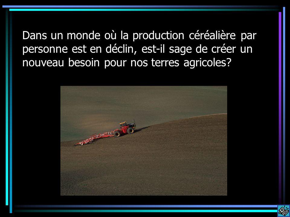 Dans un monde où la production céréalière par personne est en déclin, est-il sage de créer un nouveau besoin pour nos terres agricoles?