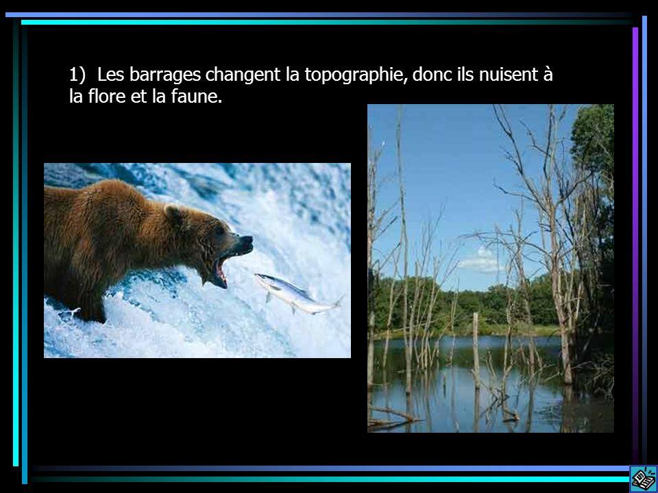 1) Les barrages changent la topographie, donc ils nuisent à la flore et la faune.
