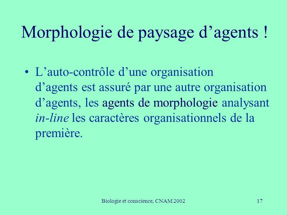 Biologie et conscience, CNAM 200217 Morphologie de paysage dagents ! Lauto-contrôle dune organisation dagents est assuré par une autre organisation da