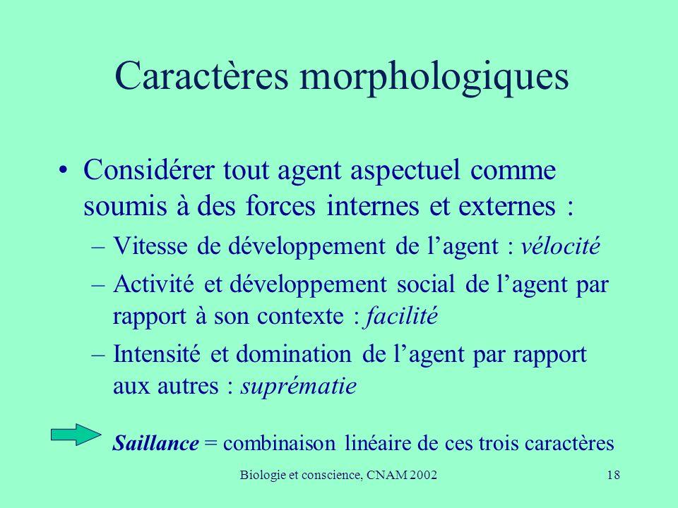 Biologie et conscience, CNAM 200218 Caractères morphologiques Considérer tout agent aspectuel comme soumis à des forces internes et externes : –Vitess
