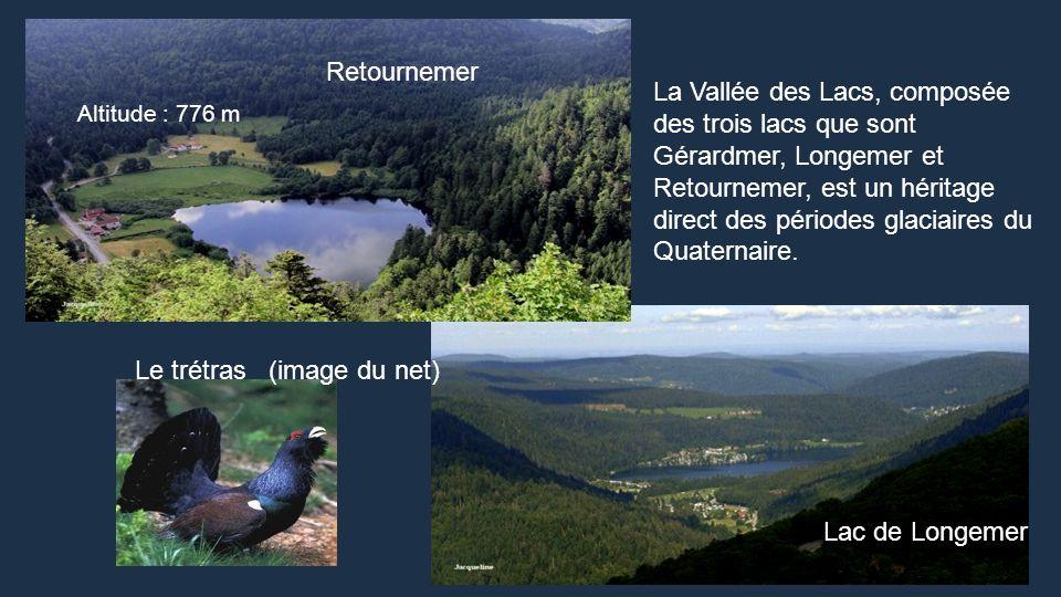 Gérardmer, la Perle des Vosges est le plus grand lac du Massif des Vosges (115,5 ha). Abel Hugo, le frère du célèbre écrivain Victor Hugo, était venu