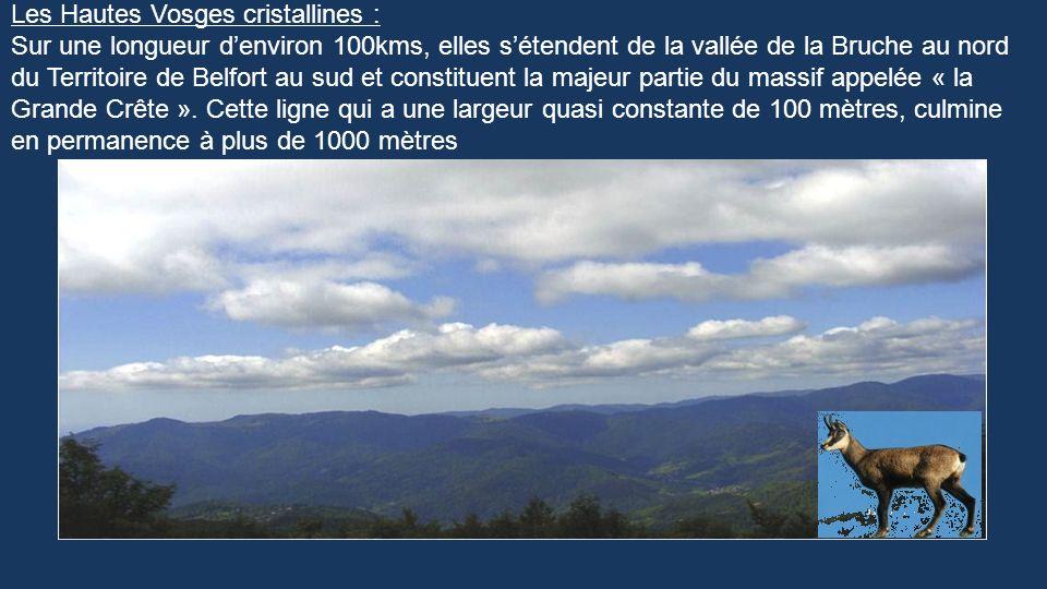 Manuel Quelques lacs, un peu de flore, de faune..