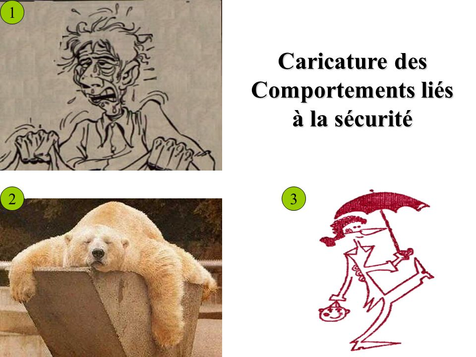 1 23 Caricature des Comportements liés à la sécurité