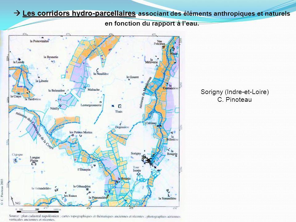 Les corridors hydro-parcellaires Les corridors hydro-parcellaires associant des éléments anthropiques et naturels en fonction du rapport à leau.