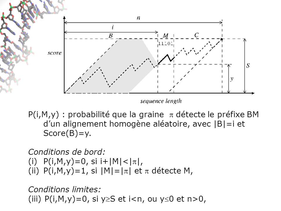 P(i,M,y) : probabilité que la graine détecte le préfixe BM dun alignement homogène aléatoire, avec |B|=i et Score(B)=y.