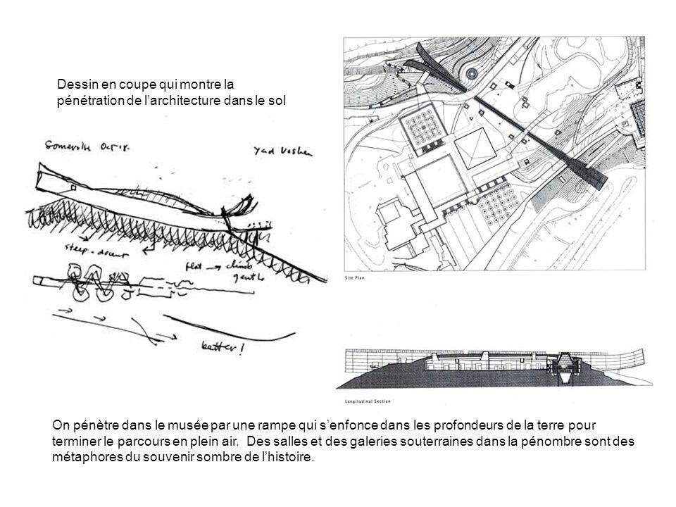 Dessin en coupe qui montre la pénétration de larchitecture dans le sol On pénètre dans le musée par une rampe qui senfonce dans les profondeurs de la