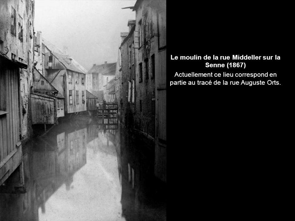 Quai aux Briques et Rue du Marché aux Porcs (1890)