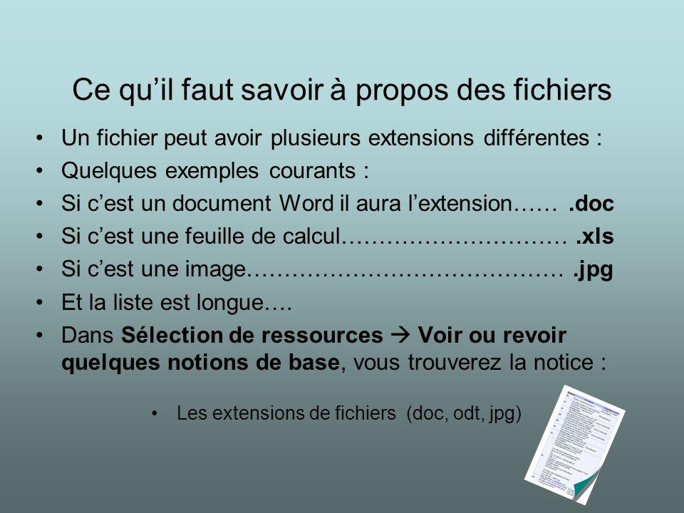 Ce quil faut savoir à propos des fichiers Un fichier peut avoir plusieurs extensions différentes : Quelques exemples courants : Si cest un document Wo