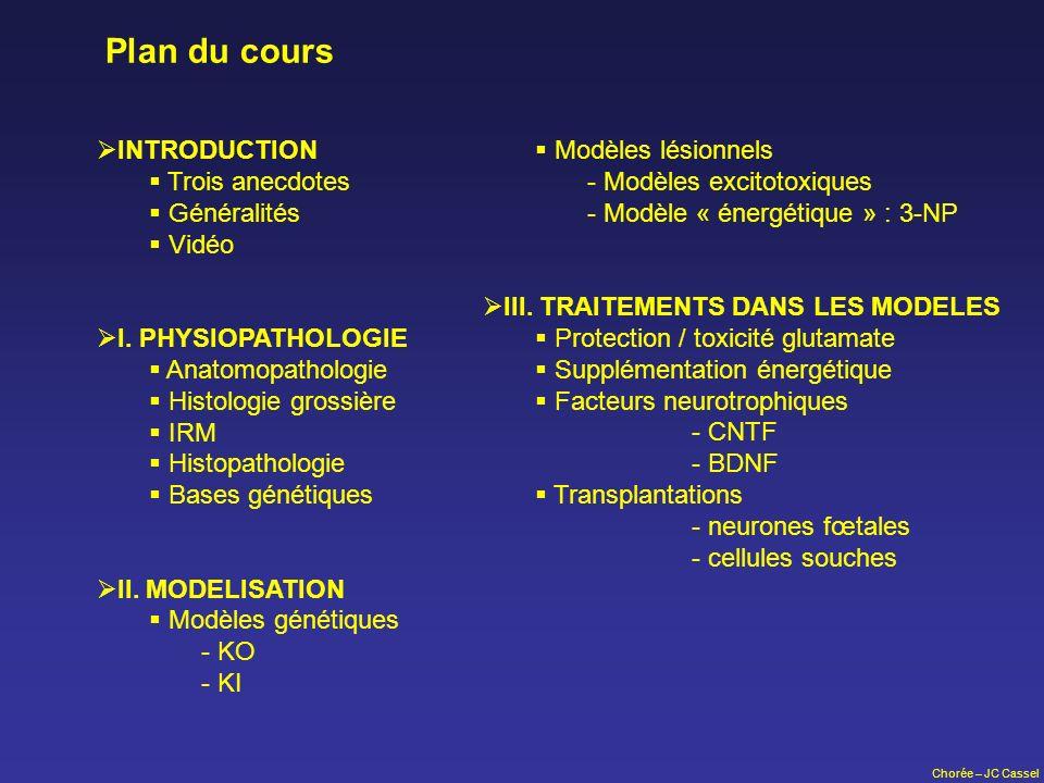 Chorée – JC Cassel Plan du cours INTRODUCTION Trois anecdotes Généralités Vidéo I. PHYSIOPATHOLOGIE Anatomopathologie Histologie grossière IRM Histopa
