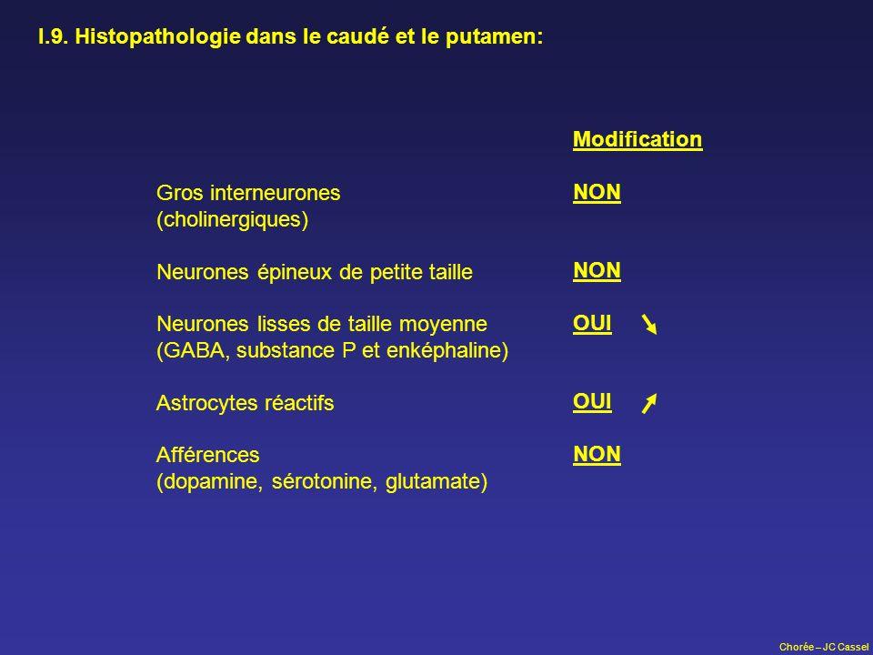 Chorée – JC Cassel I.9. Histopathologie dans le caudé et le putamen: Gros interneurones (cholinergiques) Neurones épineux de petite taille Neurones li
