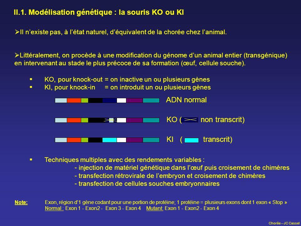 Chorée – JC Cassel II.1. Modélisation génétique : la souris KO ou KI Littéralement, on procède à une modification du génome dun animal entier (transgé
