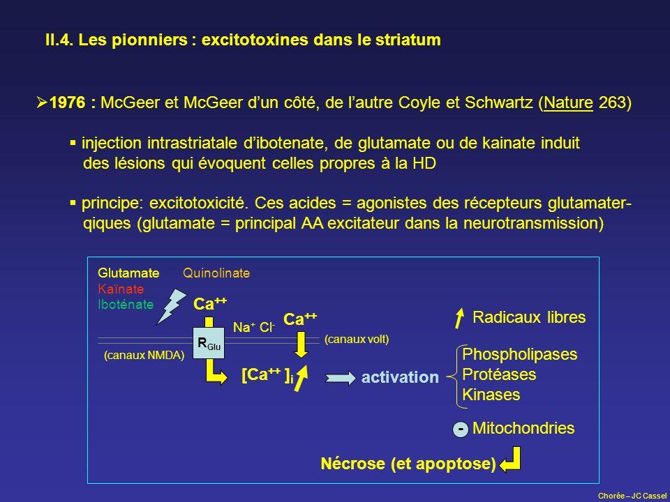 Chorée – JC Cassel II.4. Les pionniers : excitotoxines dans le striatum 1976 : McGeer et McGeer dun côté, de lautre Coyle et Schwartz (Nature 263) inj