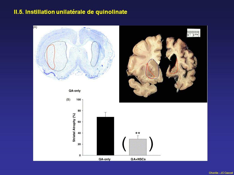 Chorée – JC Cassel II.5. Instillation unilatérale de quinolinate ( )
