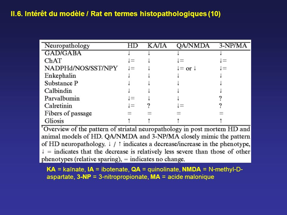 II.6. Intérêt du modèle / Rat en termes histopathologiques (10) KA = kaïnate, IA = ibotenate, QA = quinolinate, NMDA = N-methyl-D- aspartate, 3-NP = 3