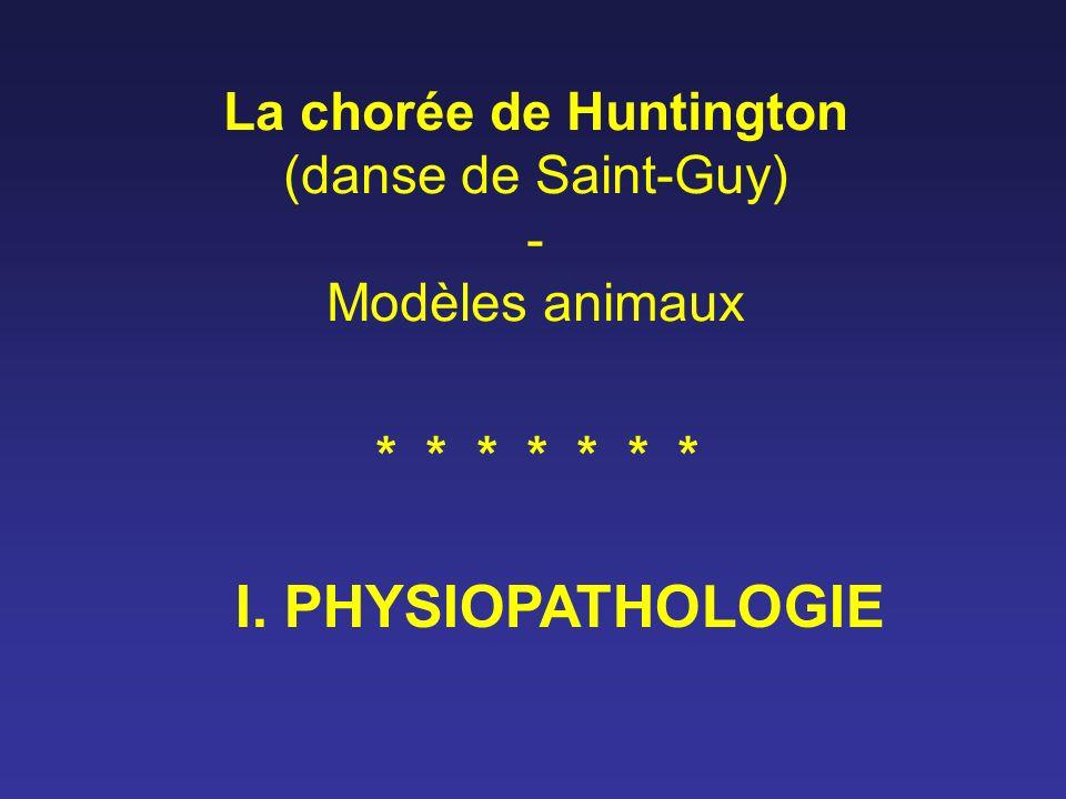 La chorée de Huntington (danse de Saint-Guy) - Modèles animaux I. PHYSIOPATHOLOGIE * * * * * * *