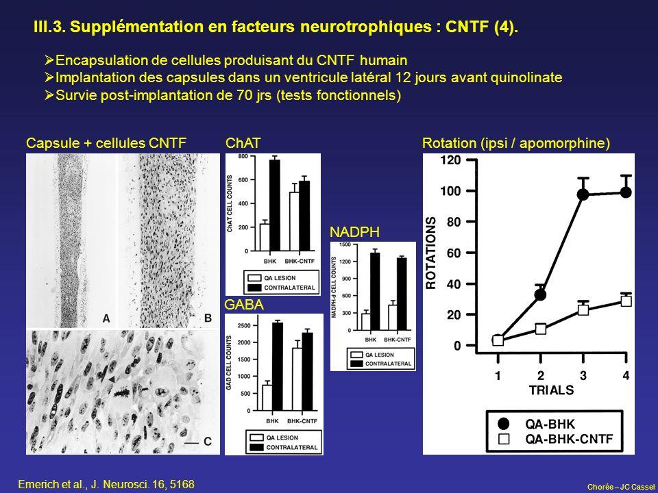 Chorée – JC Cassel III.3. Supplémentation en facteurs neurotrophiques : CNTF (4). Encapsulation de cellules produisant du CNTF humain Implantation des