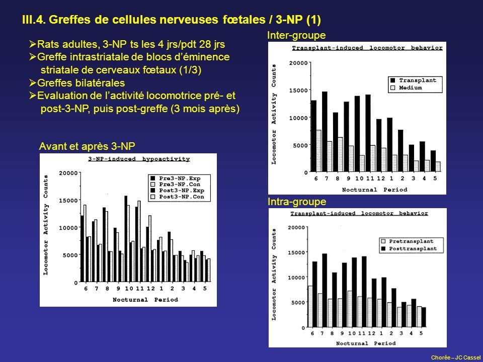 Chorée – JC Cassel III.4. Greffes de cellules nerveuses fœtales / 3-NP (1) Rats adultes, 3-NP ts les 4 jrs/pdt 28 jrs Greffe intrastriatale de blocs d