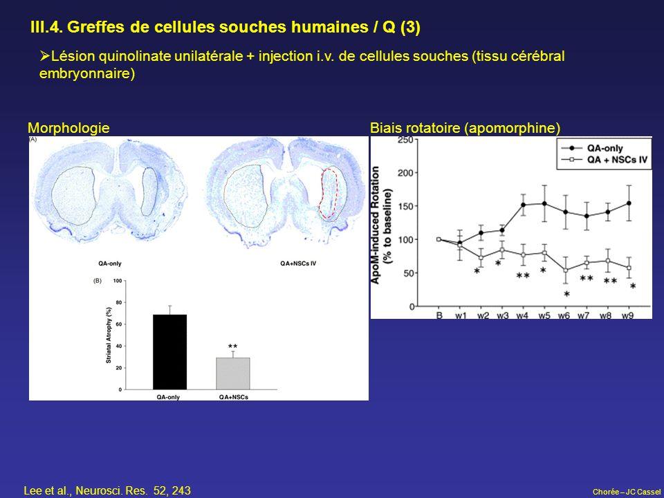 Chorée – JC Cassel Lee et al., Neurosci. Res. 52, 243 Biais rotatoire (apomorphine) III.4. Greffes de cellules souches humaines / Q (3) Lésion quinoli