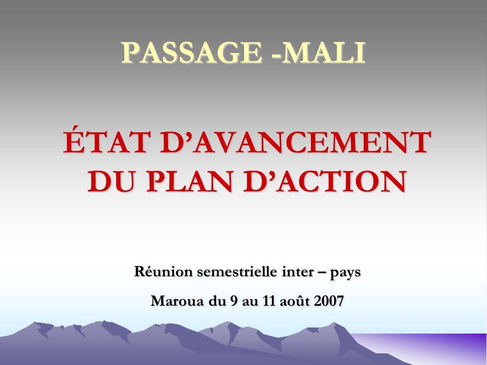 PASSAGE -MALI ÉTAT DAVANCEMENT DU PLAN DACTION Réunion semestrielle inter – pays Maroua du 9 au 11 août 2007