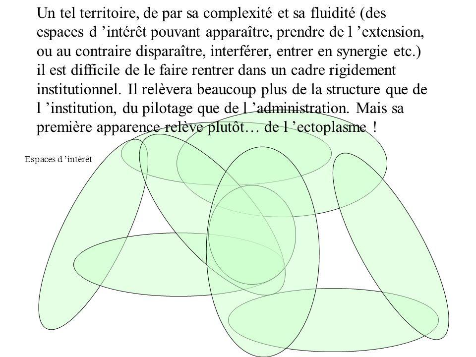 Un tel territoire, de par sa complexité et sa fluidité (des espaces d intérêt pouvant apparaître, prendre de l extension, ou au contraire disparaître,