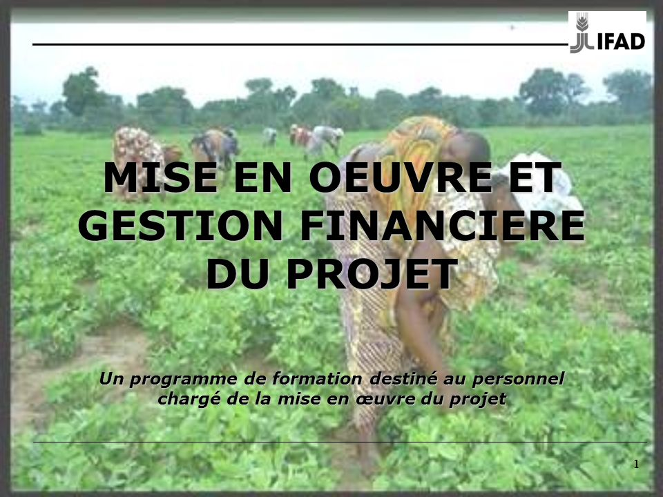 1 11 MISE EN OEUVRE ET GESTION FINANCIERE DU PROJET Un programme de formation destiné au personnel chargé de la mise en œuvre du projet