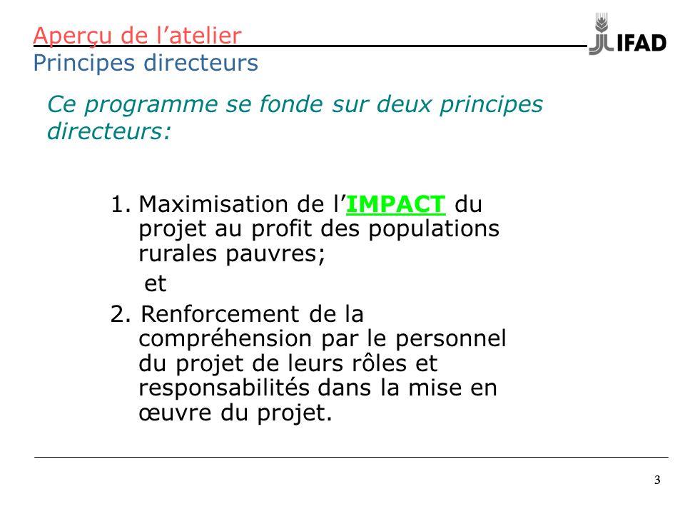 3 33 Ce programme se fonde sur deux principes directeurs: Aperçu de latelier Principes directeurs 1.Maximisation de lIMPACT du projet au profit des po