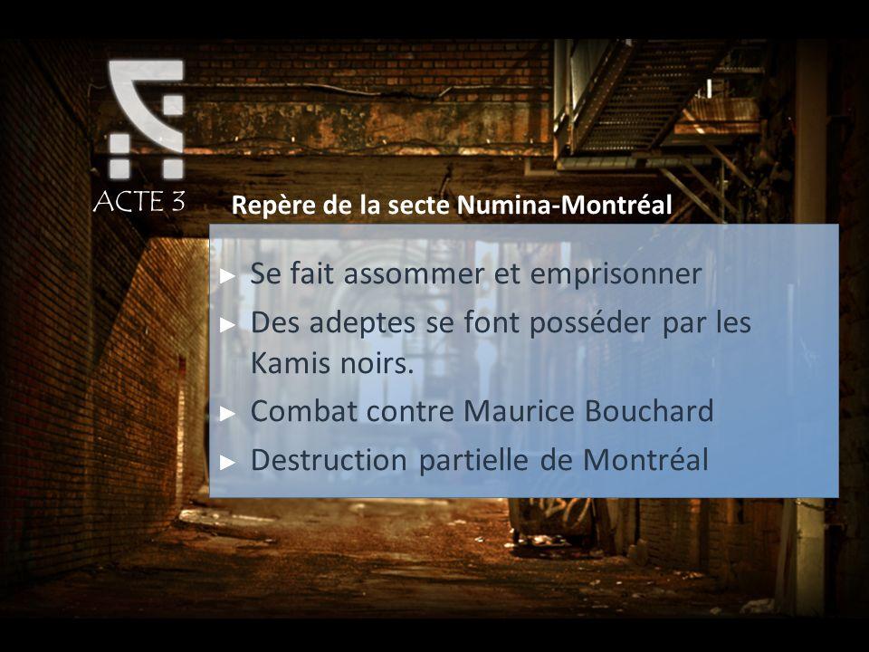 ACTE 3 Repère de la secte Numina-Montréal Se fait assommer et emprisonner Des adeptes se font posséder par les Kamis noirs. Combat contre Maurice Bouc
