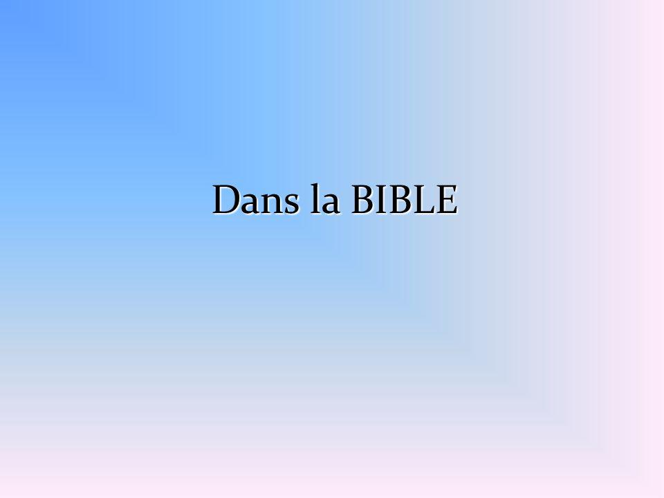 Dans la BIBLE