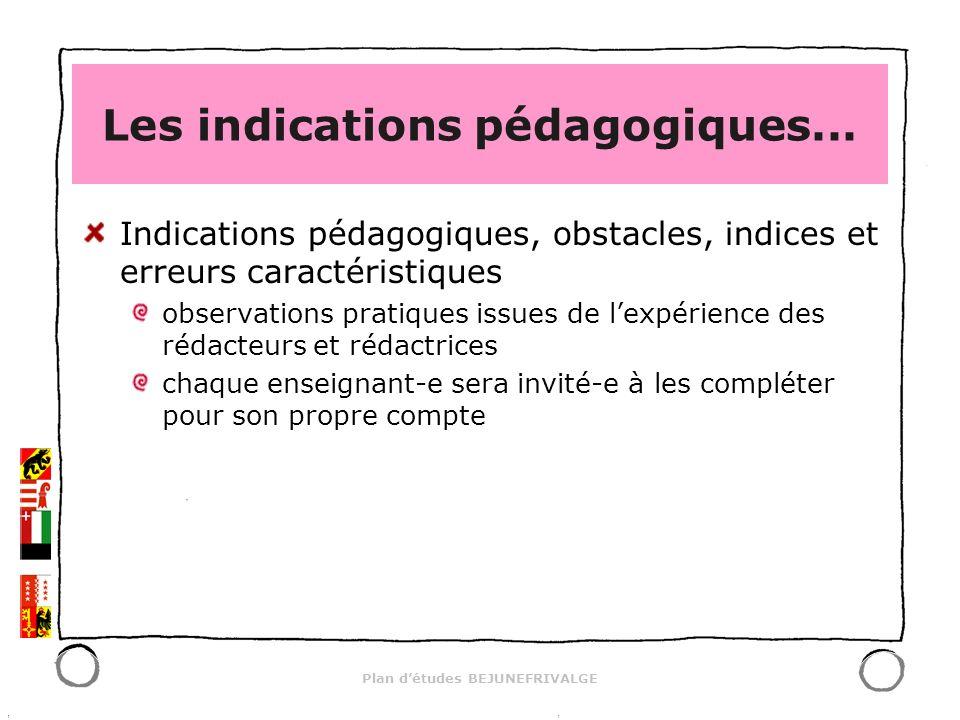Plan détudes BEJUNEFRIVALGE Les indications pédagogiques... Indications pédagogiques, obstacles, indices et erreurs caractéristiques observations prat