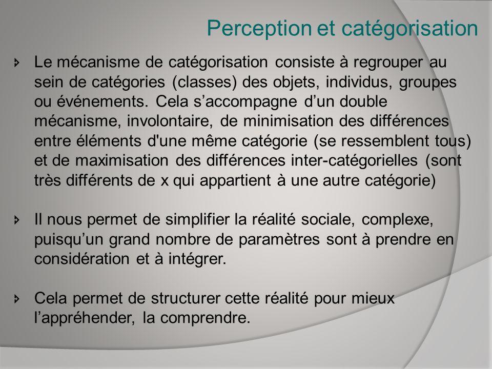 Perception et catégorisation Le mécanisme de catégorisation consiste à regrouper au sein de catégories (classes) des objets, individus, groupes ou évé