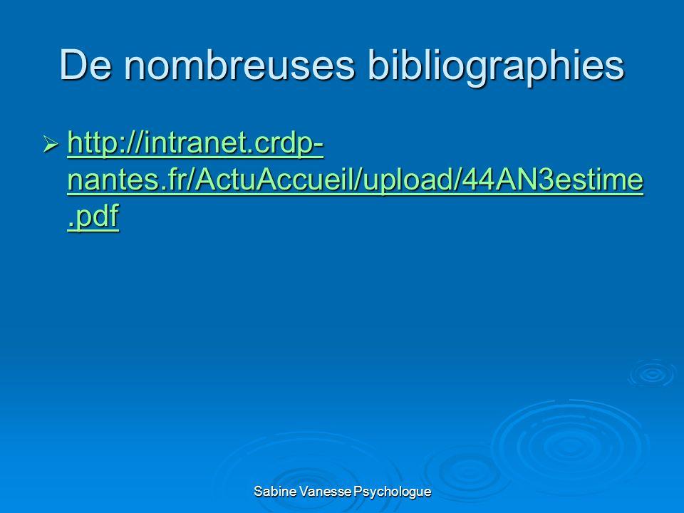 De nombreuses bibliographies http://intranet.crdp- nantes.fr/ActuAccueil/upload/44AN3estime.pdf http://intranet.crdp- nantes.fr/ActuAccueil/upload/44A