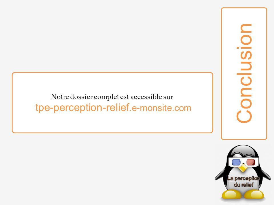 Notre dossier complet est accessible sur tpe-perception-relief.e-monsite.com Conclusion
