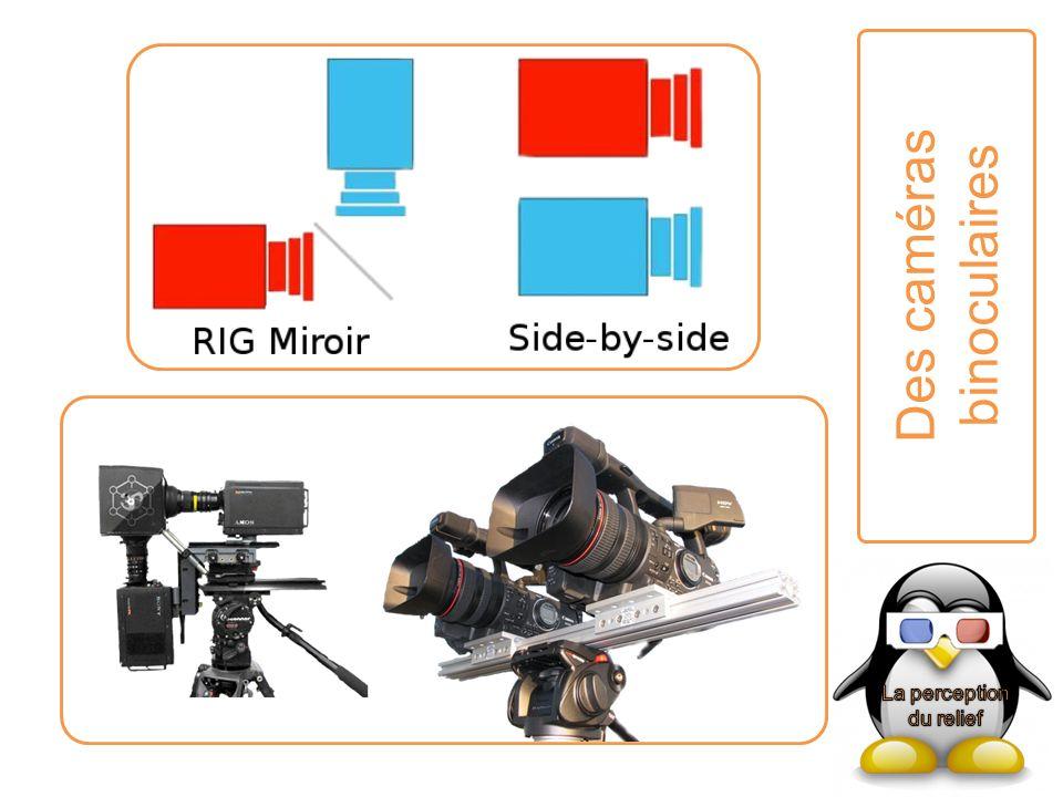 Des caméras binoculaires