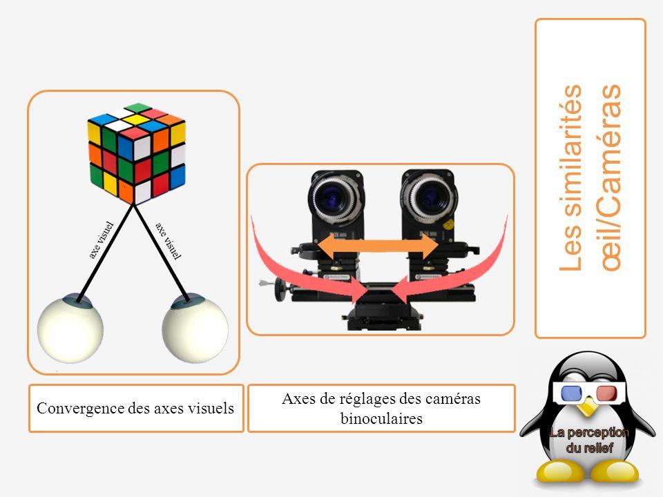 Les similarités œil/Caméras Convergence des axes visuels Axes de réglages des caméras binoculaires