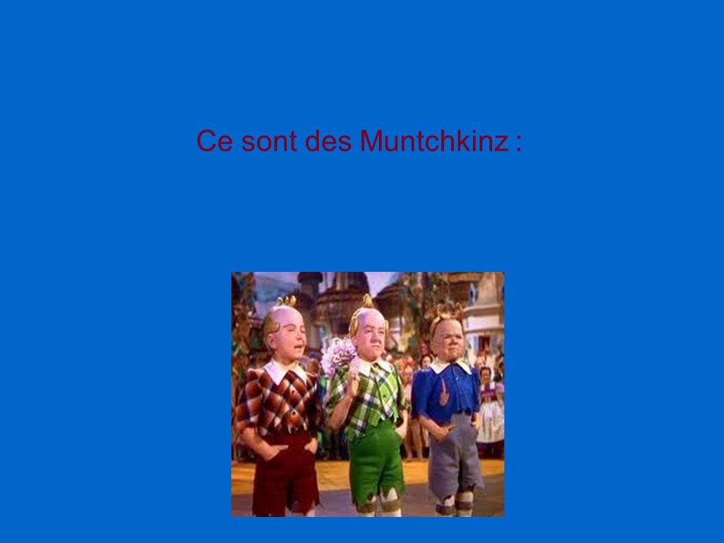 Ce sont des Muntchkinz :