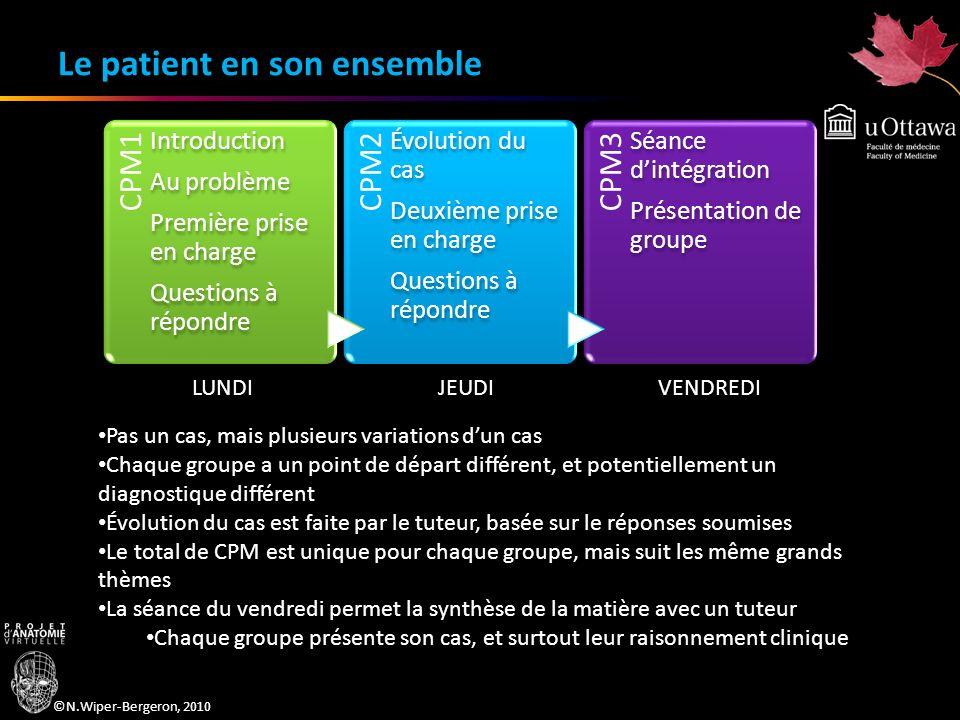 ©N.Wiper-Bergeron, 2010 Le patient en son ensemble CPM1 Introduction Au problème Première prise en charge Questions à répondre CPM2 Évolution du cas D