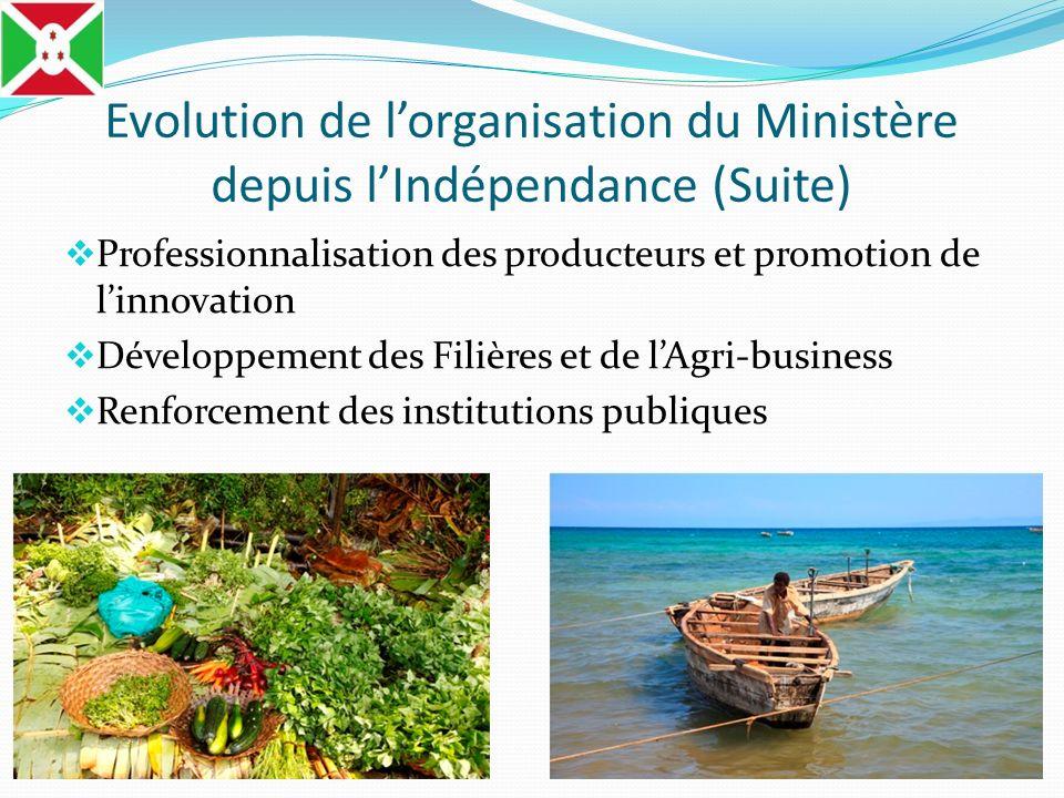 Evolution de lorganisation du Ministère depuis lIndépendance (Suite) Professionnalisation des producteurs et promotion de linnovation Développement de