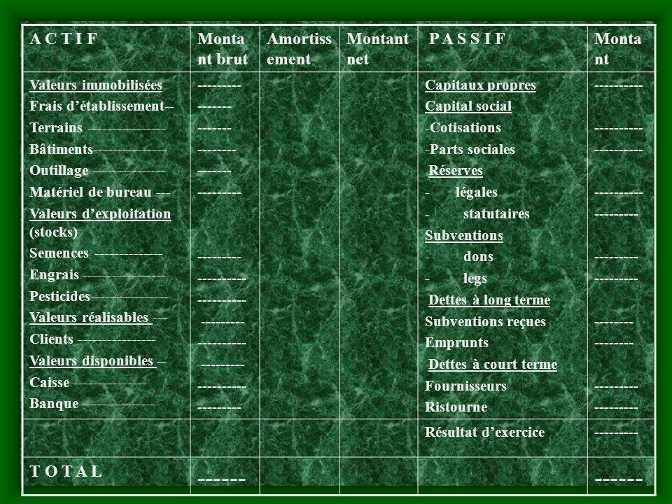 Exemple Société Coopérative de……… Bilan au 31/12/2003