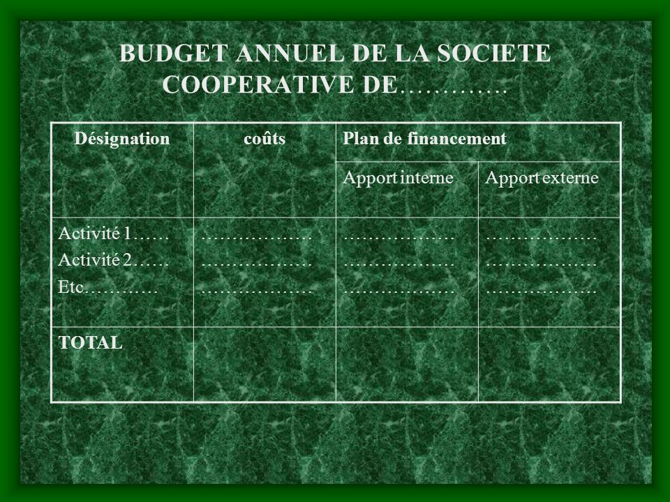 Exemples du budget : Exemples du budget : BUDGET CONSTRUCTION BANQUE DE CEREALES DE LA SOCIETE COOPERATIVE DE …… Désignationcoûts Plan de financement