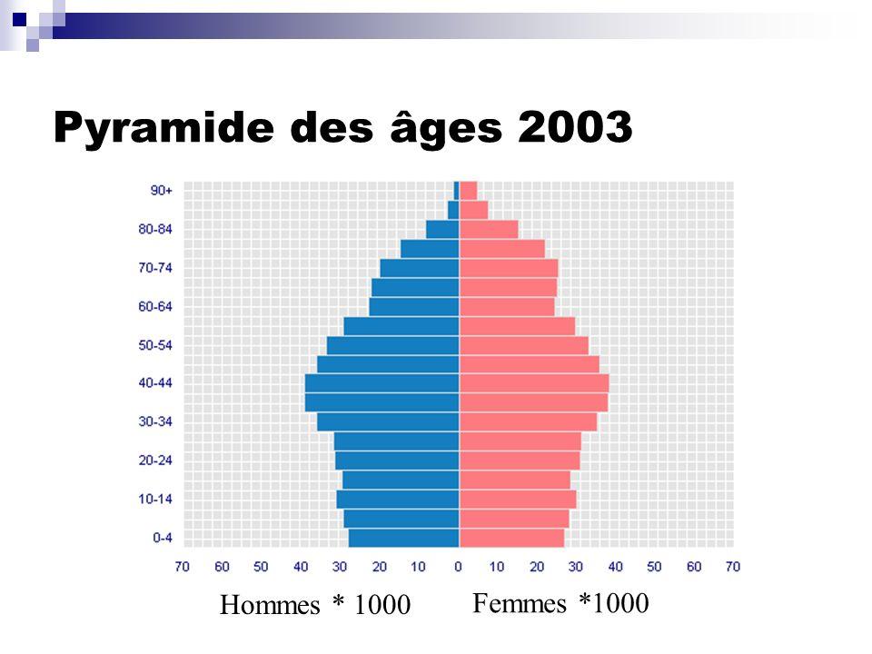 Pyramide des âges 2003 Hommes * 1000 Femmes *1000