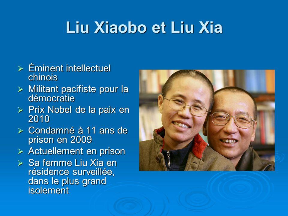 Liu Xiaobo et Liu Xia Éminent intellectuel chinois Éminent intellectuel chinois Militant pacifiste pour la démocratie Militant pacifiste pour la démoc