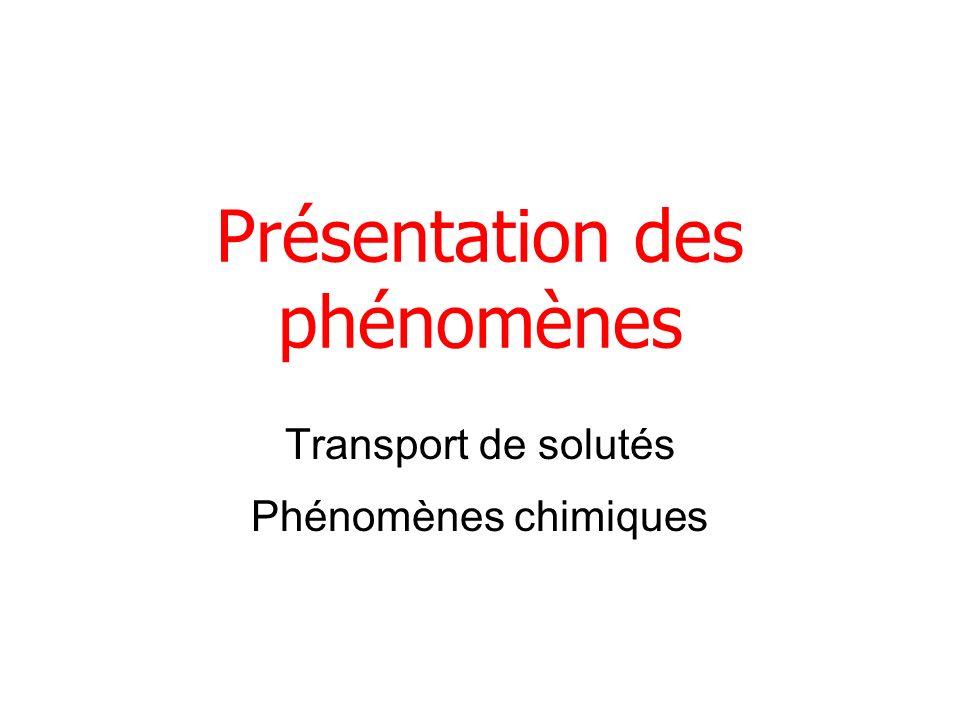 Présentation des phénomènes Transport de solutés Phénomènes chimiques