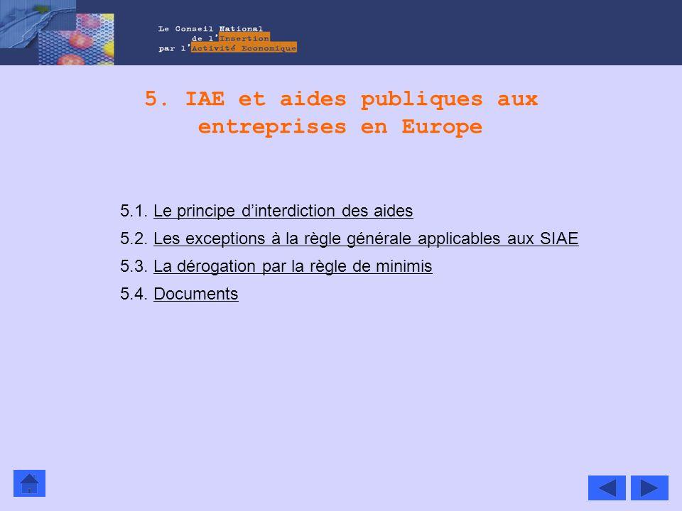 5. IAE et aides publiques aux entreprises en Europe 5.1. Le principe dinterdiction des aidesLe principe dinterdiction des aides 5.2. Les exceptions à