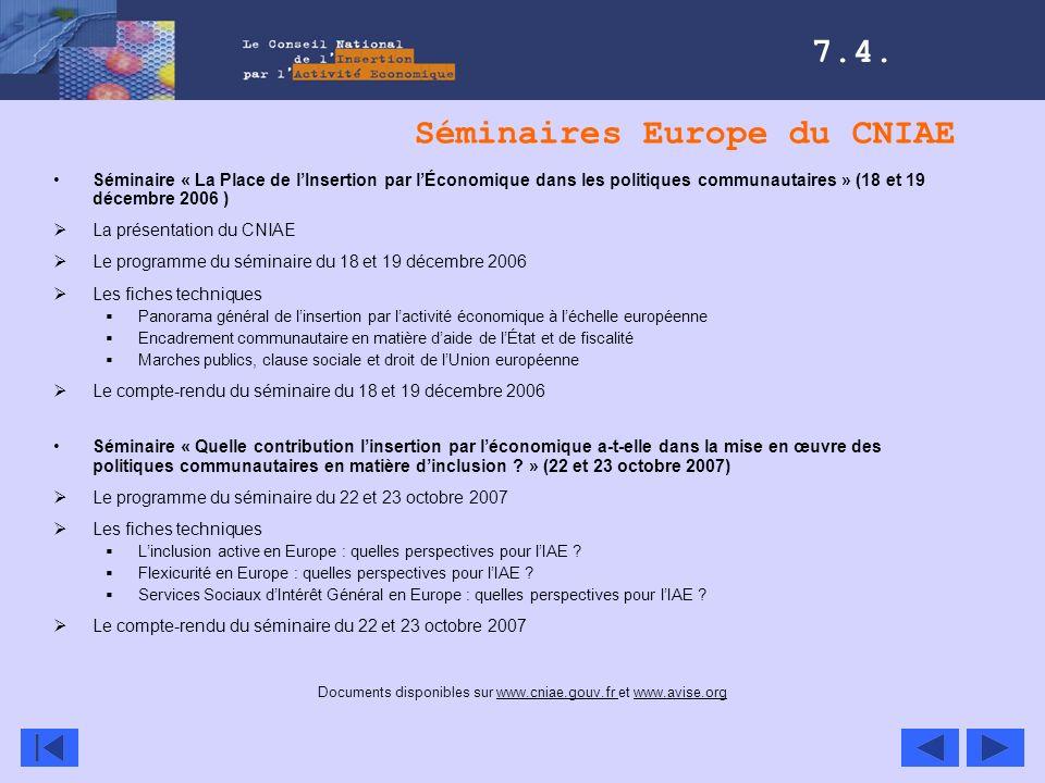 Séminaires Europe du CNIAE Séminaire « La Place de lInsertion par lÉconomique dans les politiques communautaires » (18 et 19 décembre 2006 ) La présen