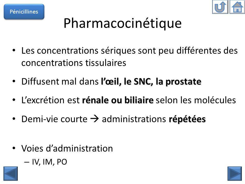Pharmacocinétique Les concentrations sériques sont peu différentes des concentrations tissulaires lœil, le SNC, la prostate Diffusent mal dans lœil, l