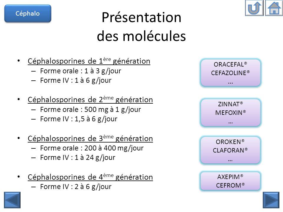 Présentation des molécules Céphalosporines de 1 ère génération – Forme orale : 1 à 3 g/jour – Forme IV : 1 à 6 g/jour Céphalosporines de 2 ème générat