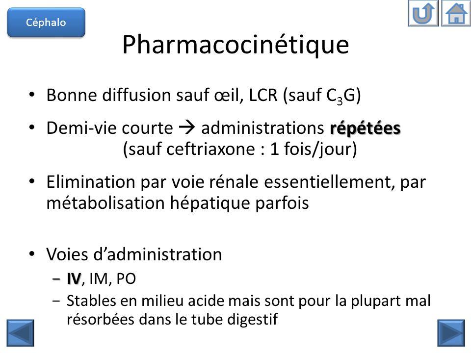 Pharmacocinétique Bonne diffusion sauf œil, LCR (sauf C 3 G) répétées Demi-vie courte administrations répétées (sauf ceftriaxone : 1 fois/jour) Elimin